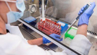 Photo of كيف يسرّع العلماء صناعة لقاح كورونا ؟