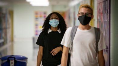 صورة آخر تحديثات فيروس كورونا في ألبرتا